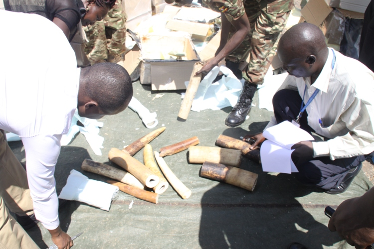 AVPOL Officers in action dismantling the boxes with no mercy.