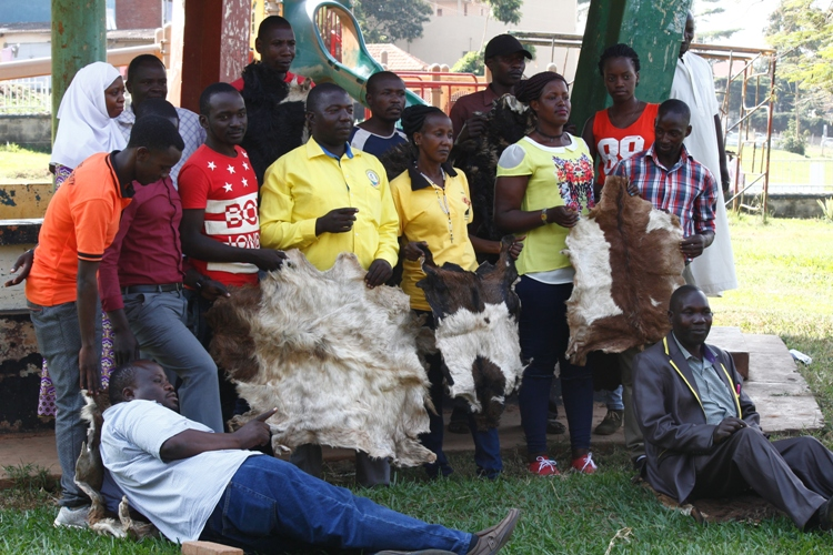 Entebbe NRM Party Bosses launched Museveni No-Age limit campaign with cow skins at the Children's Park.