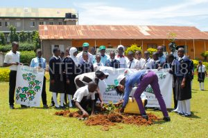 Entebbe Parents S.S Students planted trees in the school compound