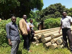 Entebbe Division B Chairman Namayirira Stanley (in brown jacket) with his councilors pose for photos with the 50 electric poles they received.